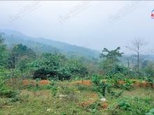 Chỉ 80.000/M2–Đất Đẹp Gần Khu CN Yên Quang