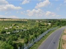 3 lô đất nông nghiệp hồng thái sát đường liên huyện giá ưu đãi Lh 0385230667