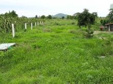Bán 4578m2 đất nông nghiệp hồng thái vị trí đẹp giá chỉ 320 triệu Lh 0385230667