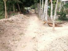 Đất thổ cư 419m2 hẻm nhánh Tỉnh Lộ 923 Trường Lạc Ô Môn