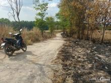 Bán 2 hecta đất cafe ở xã Ninh Giá,D9u7v1 Trọng,Lâm Đồng,giá 5 tỷ TL chính chủ