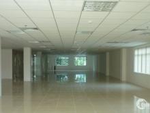 Cho thuê văn phòng Kicotrans, Bạch Đằng, Tân Bình, 193m2, 69 triệu bao thuế phí