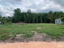 Cần bán gấp lô đất thổ cư ngay cổng sau KCN Hiệp Thạnh, Gò Dầu, Tây Ninh,sổ sẳn,