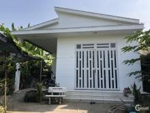 Cần bán khuôn viên trang trại, nhà vườn, kho bãi &nhà nuôi Chim Yến tại Cần Thơ