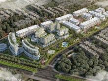 dự án calyx residence 319 uy nỗ - đông anh, dự án nằm trên mặt đường lớn cổ loa
