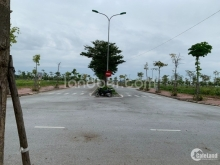 Bán đất tại TNR Star Tân Trường, Cẩm Giàng, Hải Dương, giá 1.3 tỷ