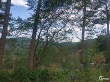 Bán lô đất nằm trên đỉnh đồi view 360* đường 3 tháng 4 thành phố Đà Lạt
