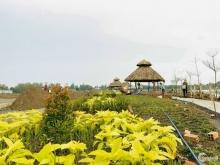 Đất trên đường Nguyễn Văn Bứa ND . Cách trung tâm hành chính quận Hóc Môn 800m