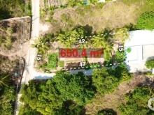 Bán mảnh đất 650m phố Tây Cửa Lấp Trần Hưng Đạo TP Phú Quốc