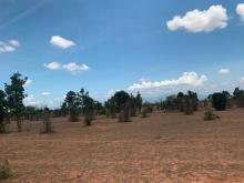 13,900m2 đất, 1 tỷ 250, có sổ, có đường hiện hữu, liền kề liên huyện.