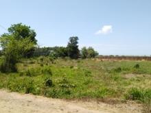 Bán 1,7 mẫu đất vườn tại láng dài, huyện đất đỏ.