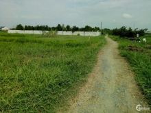 Đất vườn QH đất ở 1328m2 đường 107 gần chợ sáng Tân Thạnh Đông