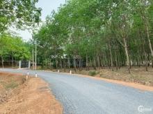 Đất Lộc Thiện 1000m2 đầu tư ngay trung tâm Lộc Ninh Bình Phước