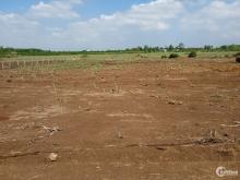 Cần tiền bán gấp 1000m2 đất vườn Hưng Thịnh, Trảng Bom