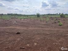 Bán gấp miếng đất vườn 1000m2 gần đường nhựa lớn xã Hưng Thịnh, Trảng Bom.