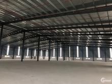 Cho thuê nhà xưởng hơn 4.000m2, KCN Quế Võ 3. Độc lập, đăng ký EPE.
