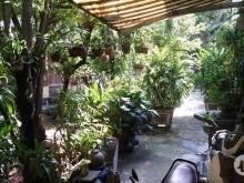 Nhà Trệt, HXH.(dài 100 rộng 4m Thông) xây Villa mini DT: 215m2