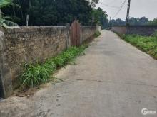 Bán gấp mảnh đất tại Ba Vì, hợp đầu tư xây nhà vườn nghỉ dưỡng