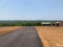 Thu hồi vốn cần bán gấp 110m2 thổ cư cách quốc lộ 20 2km.