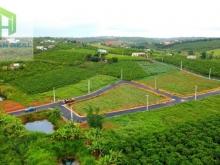 Nền Biệt thự nghỉ dưỡng thành phố Bảo Lộc giá bất ngờ