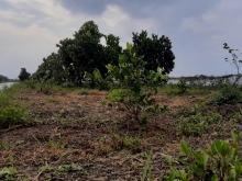 Bán đất giá rẻ ở Bình Phước 1000m2 giá 175 triệu