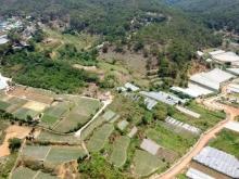 bán đất Phù Hợp quy hoach đất ở,thích hợp phân lô bán nền phường 11,đà Lạt