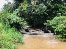 Bán đất view suối tại Gia Hiệp, Di Linh (cách QL 20 chỉ 2km),300tr/sào