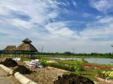 Đất trên đường Nguyễn Văn Bứa ND . Mở bán GĐ1