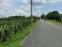 Cần bán 4000m2 đất xã An Vĩnh Ngãi-TP Tân An, sổ hồng CC, giá tốt