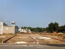 Bán 518m2 Đất Đối Diện Biệt Thự Nhà Vườn Phường Hắc Dịch,Thị Xã Phú Mỹ Giá1295tr