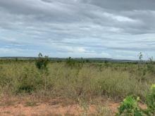 Bán 12,353m2 đất nông nghiệp hồng thái vuông đẹp gần liên huyện Lh 0385230667