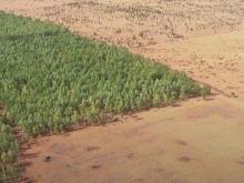 Liên hệ để mua ngay mảnh đất vườn 16,000m2 cách QL1A chỉ 1km, sẵn sổ,cực kỳ đẹp