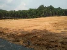 Hiện nhà phân vài lô đất ở Vĩnh Tân gần các KCN VSIP2,cụm các KCN lân cận