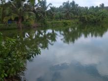 Bán nhà vườn nghỉ dưỡng 6000m2 , thị trấn Vĩnh An , Vĩnh Cửu, Đồng Nai