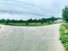 Đất KP Suối Nhum giá mùa covit hạt dẻ,giá 2tr5/m2,Nở hậu