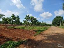Bán Đất Sào Thuộc Đá Bạc Gíap Long Phước Hòa Long Cách Hương Lộ 2 500m