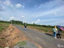 Bán 300m tc 100m nằm cạnh khu dân cư xí nghiệp Bình long - Bình Phước