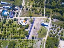 Cần bán gấp lô đất thổ cư Cam Lâm cách QL1A chỉ 500m giá cực tốt
