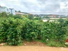 Đất thổ cư giá rẻ Lạc Dương Lâm Đồng