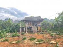 Bán mảnh đất Vân Hồ- Mộc Châu khoảng 1.8ha có 400 thổ cư giá chỉ vài trăm triệu,