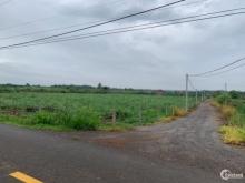 Bán đất SKC đường container - Cách KCN 3km