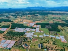 Đất nông nghiệp Bình Thuận giá rẻ cho quý nhà đầu tư