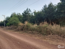 Bán Đất Bình Phước 1000m2 Giá Chưa Đến Nữa Tỷ (Giá Tốt Nhất Năm 2021)