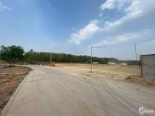 Đất Phường Phú Chánh , TX Tân Uyên, Bình Dương giá 1 tỷ 356 triệu