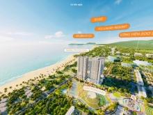 Chỉ 1,390 tỷ sở hữu ngay căn hộ mặt biển Quy Nhơn - Takashi Ocean Suite