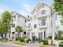 cần bán căn biệt  thự diện tích 156m2 thuộc dự án times garden Vĩnh Yên