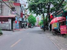 Nhà mặt phố Hoa Lâm, Kinh doanh sầm uất, DT110m², MT5m, Nhỉnh 10 tỷ.