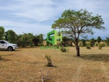 Bán đất tại Bắc Bình, Bình Thuận diện tích 6,000m2 giá 500 Triệu