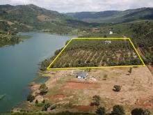 Đất vườn nghỉ dưỡng, tiếp giáp và view bao trọn hồ Ngọc, hồ đẹp nhất Bảo Lộc