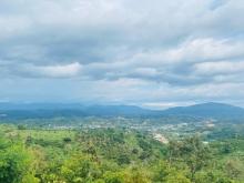 Đất Thổ Cư, View Săn Mây Núi Đại Bình, Diện Tích Lớn, Giá Rẻ